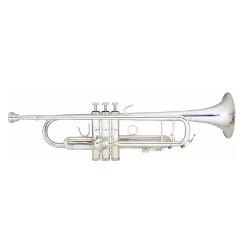 Trompeta Nikelada Silver...